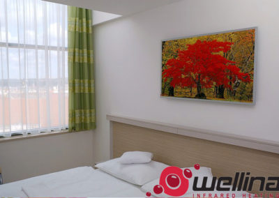 infrapanely_wellina_Reference_ankora_hotel_2