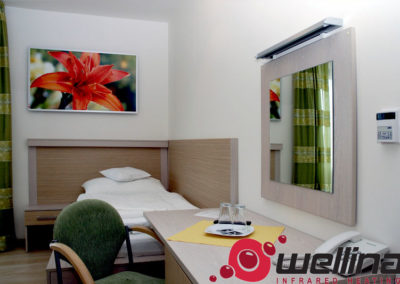 infrapanely_wellina_Reference_ankora_hotel_6